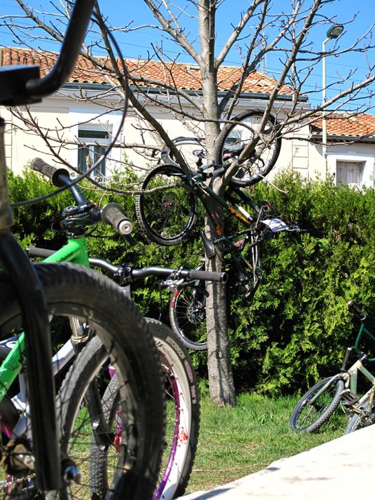 So siehts im Vorgarten einer richtigen Zweirad-WG aus