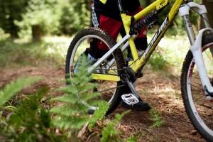Das neue Nicolai AFR, ein wirklich Spaß bringendes Bike. Pic: Sebastian Schieck